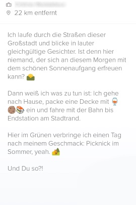 Partnersuche text